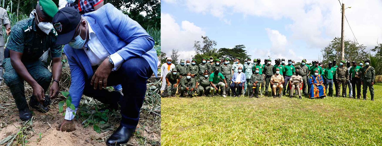 Launch of the National operation «  1 day, 5 million trees  » in our site of SAPH Bongo